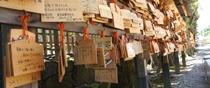 Ema of Izumo Grand Shrine, Taisha-cho, Izumo, Shimane.