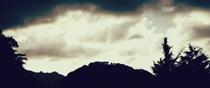 島根県大田市大森町 要害山頂の山吹城